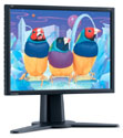 ViewSonic+is+now+offering+a+20%2E1%2Dinch+LCD+display+%28VP201b%2Fs%29+for+NT22%2C900+%28US%24730%29%2C+down+from+NT36%2C900+%28US%241%2C176%29