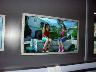 AUO 46-inch HDTV panel at FPD Taiwan 2005 (Jun 08-Jun 10)
