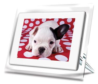 CES 2008: ViewSonic 7-inch DP701W4WH digital photo frame