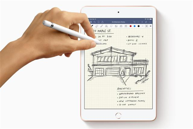 Apple iPad mini with Pencil support