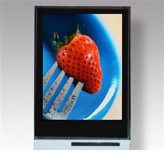 TMDisplay%27s+2%2E2%2Dinch+OLED+panel