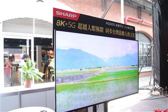 China+to+see+more+OLED+TV+competitions